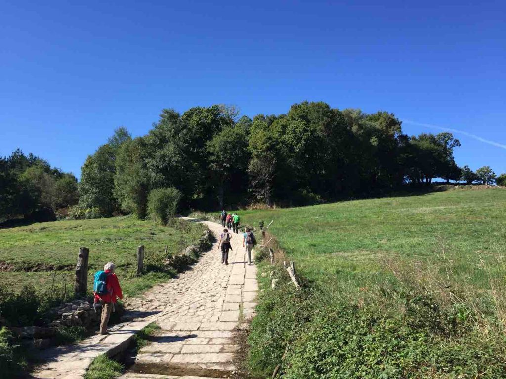 People walking on the Camino de Santiago